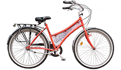 Ladies beachcruiser bike with 3 speeds and hand brakes